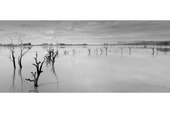<p>Lake Lonsdale - First Place - Digital: Panorama <small>&copy; Cathy Buchanan</small></p>