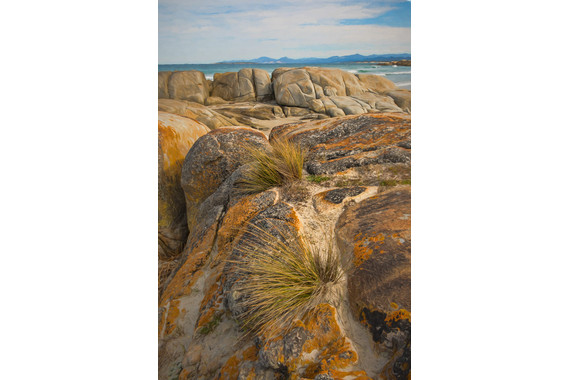 <p>HC - A Grade: Open Digital - Bay of Fires <small>&copy; Kathryn Hocking</small></p>