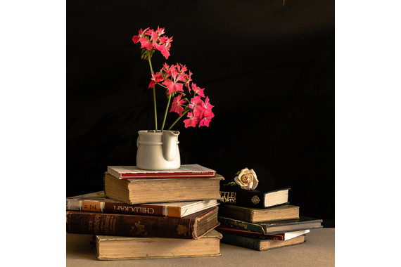 <p>2nd - B Grade: Open Print - Still Life With Book and Flowers <small>&copy; Robert Moyses</small></p>